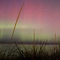 Auroras Over Lake Michigan by Jackie Novak