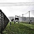Aushwitz-birkenau by AR Harrington Photography
