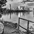 Austin Texas Skyline Lou Neff Point In Black And White by Silvio Ligutti