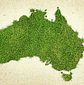 Australia Grass Map by Aged Pixel