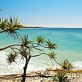 Australian Beach by Tim Hester
