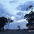 Australian Countryside by Tim Richards