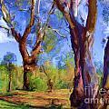Australian Native Tree 2 by Russell Kightley