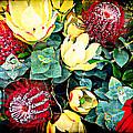 Australian Wild Flowers by Billie-Maree Ward