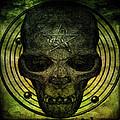 Authentic Skull Of The Vampire Callicantzaros by Chris Lord