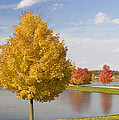 Autumn Day By The Lake by Elvira Butler