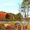 Autmn Pond Closer Look by Aimee L Maher ALM GALLERY