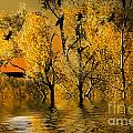 Autum Leaves by Angelika Drake