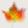 Autumn Abstract Colorful Orange Green Yellow Nature Fine Art Photograph Digital Painting by Artecco Fine Art Photography