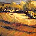 Autumn Abstract by Nancy Merkle