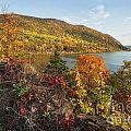 Autumn Along The Hudson by Claudia Kuhn