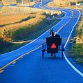 Autumn Amish Buggy Ride by Dan Sproul