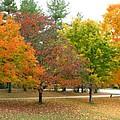 Autumn at Heritage