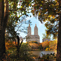 Autumn At San Remo by Jessica Jenney