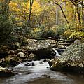 Autumn At Stony Creek by Amy Jackson
