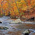 Autumn At The Black River by Dave Mills