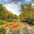 Autumn At The Creek - Green Lane - Pennsylvania - Usa by Mother Nature
