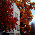 Autumn At The Grants Pass Courthouse by Mick Anderson