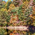 Autumn At The Pond  by Kerri Farley