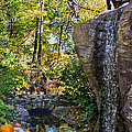 Autumn At The Waterfall by Tom Gari Gallery-Three-Photography