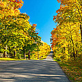 Autumn Back Road by Steve Harrington
