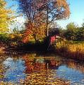 Autumn Barn by Joann Vitali