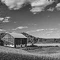 Autumn Barn Monochrome by Steve Harrington