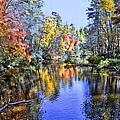 Autumn Beauty by Bill Hosford