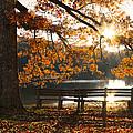 Autumn Beauty by Debra and Dave Vanderlaan