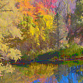 Autumn Beside The Pond by Don Schwartz