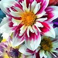 Autumn Bouquet by Michelle Calkins