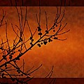 Autumn Branches by Angela Stanton