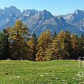 Autumn - Brenta Dolomites by Phil Banks