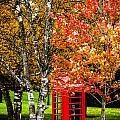 Autumn Call by Sheri Bartoszek