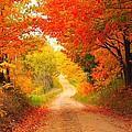 Autumn Cameo 2 by Terri Gostola