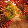 Autumn Cameo by Terri Gostola