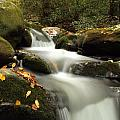 Autumn Cascades In Tennessee by Dan Sproul