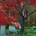 Autumn Charleston Churchyard by Deborah Smith