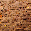 Autumn Cobble Stone Road II by Tikvah's Hope