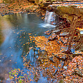 Autumn Color In Pond by John Magyar Photography