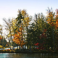 Autumn Color On The Fulton Chain Of Lakes by David Patterson