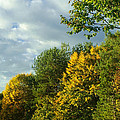 Autumn Colors 6 by Rudi Prott