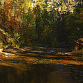 Autumn Colors By The Creek  by Saija  Lehtonen