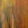 Autumn Colors II by Daniel Csoka