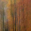 Autumn Colors IIi by Daniel Csoka