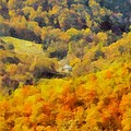 Autumn Colors In Shenandoah by Dan Sproul