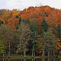Autumn Colors by Ivan Slosar