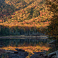 Autumn Colors Reflected In Stream by Jeff Folger