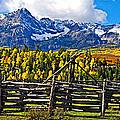 Autumn Corral by Gary Benson