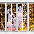 Autumn Cottonwood Tree Longs Peak White Window View by James BO  Insogna